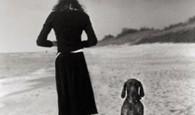IL LIBRO. Sacrificio e amore, passione e amicizia, rinuncia e dedizione… quanta vita c'è dietro l'elaborazione di una formula? Enrico Fermi, con quella formula acquisì...