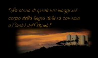 (Eraldo Affinati, Peregrin d'Amore, Mondadori, Milano, 2010) a cura del Liceo classico Virgilio, Roma