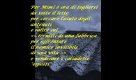 (Mario Desiati, Ternitti, Milano, Mondadori, 2011) a cura del Liceo scientifico Ettore Majorana, Guidonia (Roma)